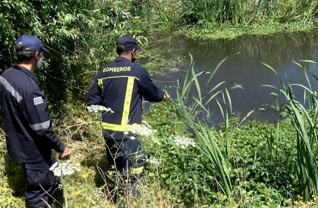 Cráneo hallado en San José era del ex funcionario municipal desaparecido hace 3 meses