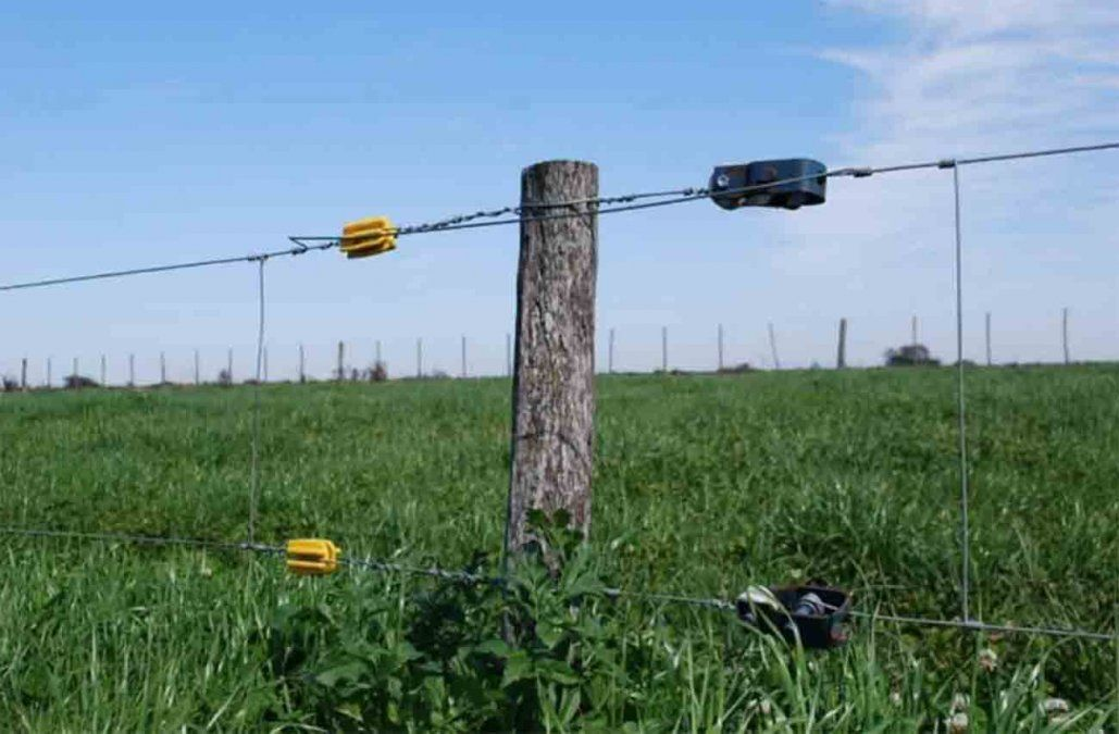 Revocan el fallo para el dueño del campo donde murió un adolescente electrocutado