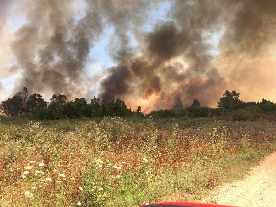 Bomberos trabaja en incendio en Canteras de Suárez, en ruta 74