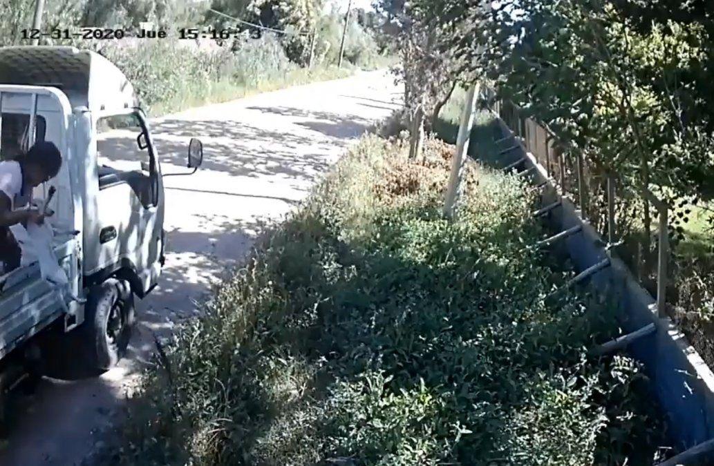 Captan en video a mujer tirando cachorros en la puerta de El Refugio