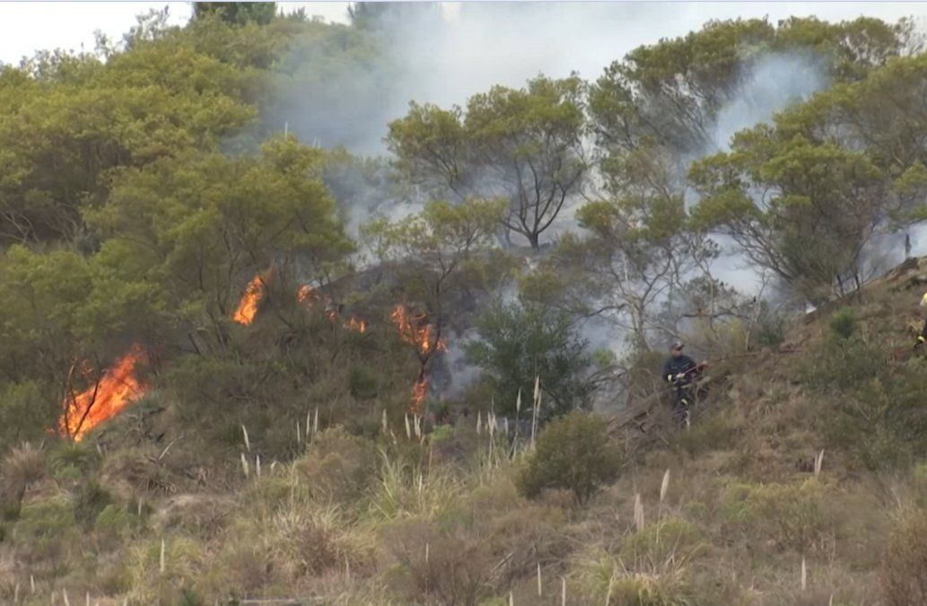 Bomberos trabajaron en varios incendios forestales simultáneos este sábado