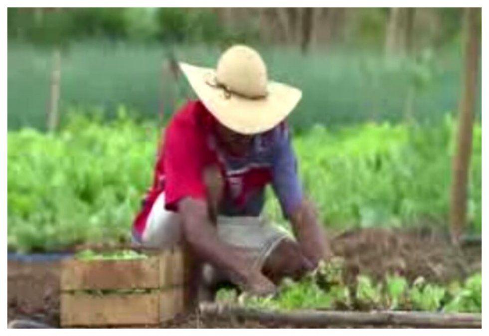 Brasil vive un boom de exportaciones agrícolas pese a la pandemia