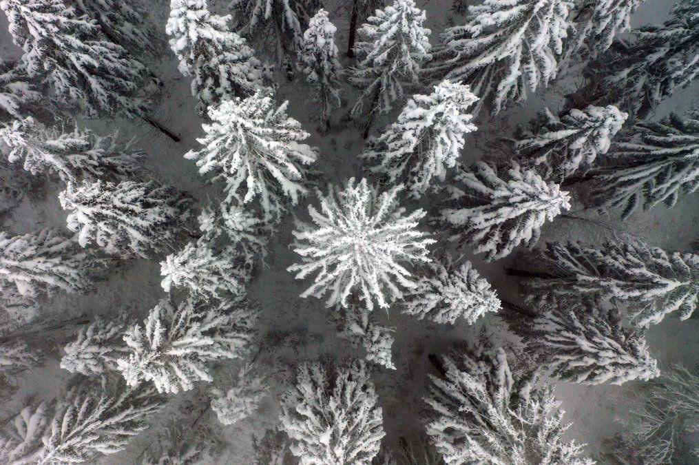 Paisaje cubierto de nieve en la montaña Nordhelle cerca de Meinerzhagen