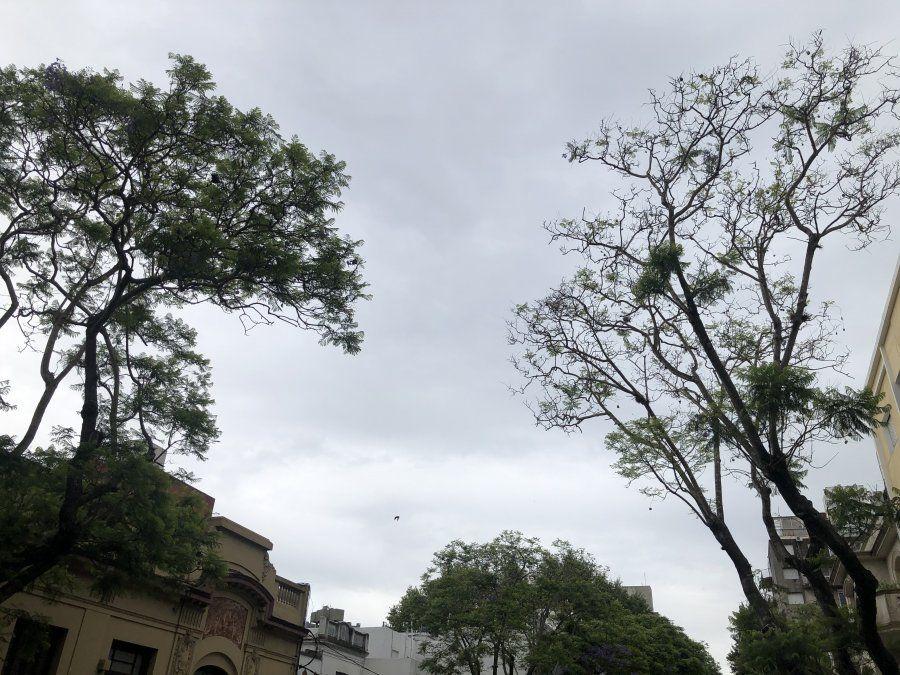 Sábado nuboso con precipitaciones en todo el país y altas temperaturas en el norte