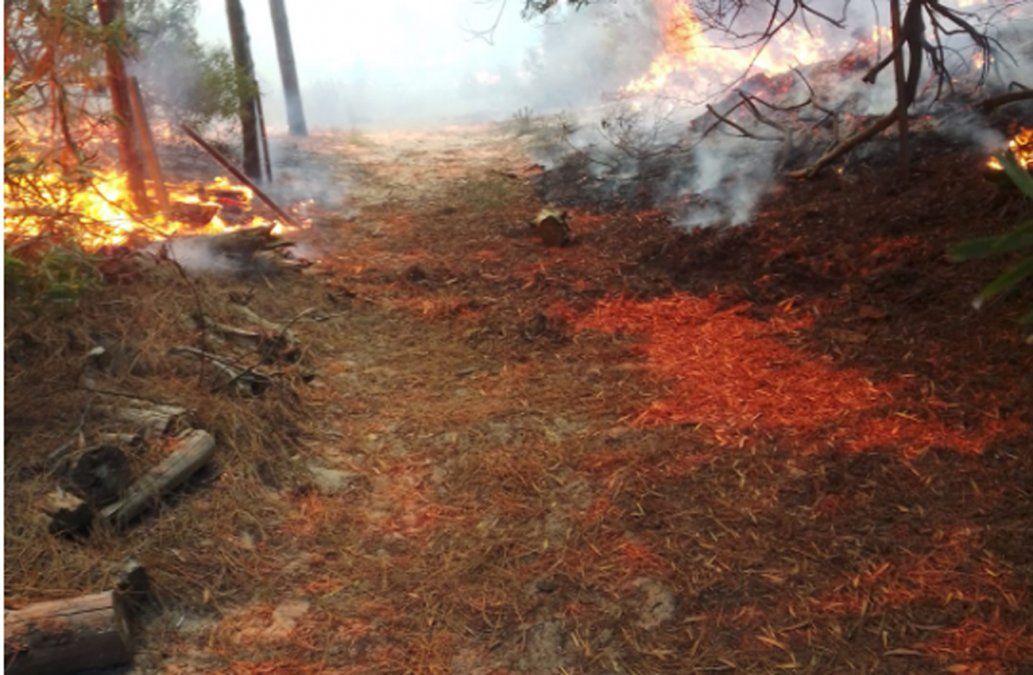 Un detenido por el incendio en Playa Grande y camping de Punta del Diablo