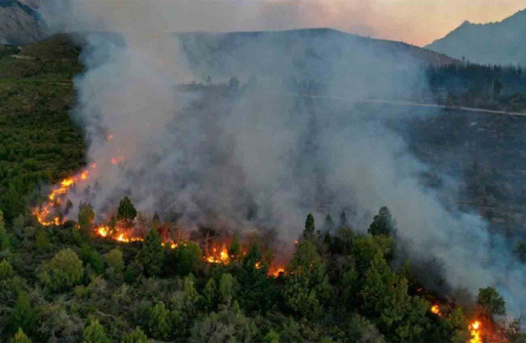 Incendio forestal devora 6.500 hectáreas de bosque en el sur argentino