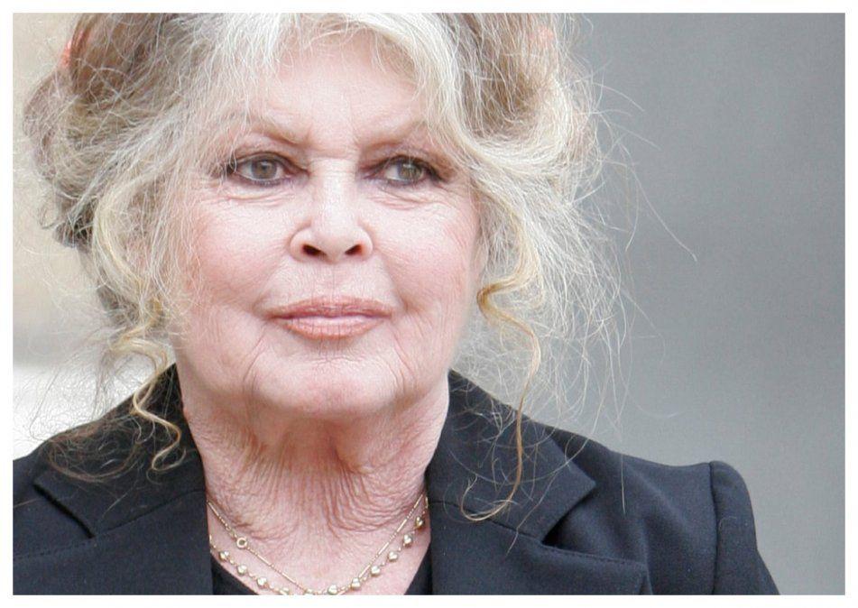 Bardot se retiró de la industria del entretenimiento en 1973. Actuó en 47 películas