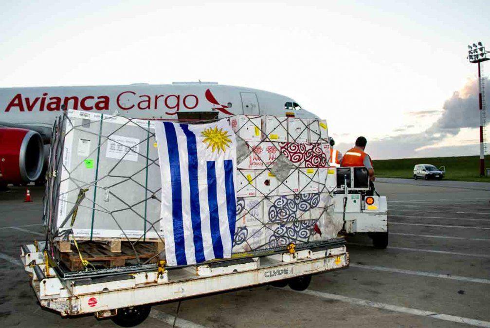 Arribaron al país las primeras 48.000 dosis de AstraZeneca