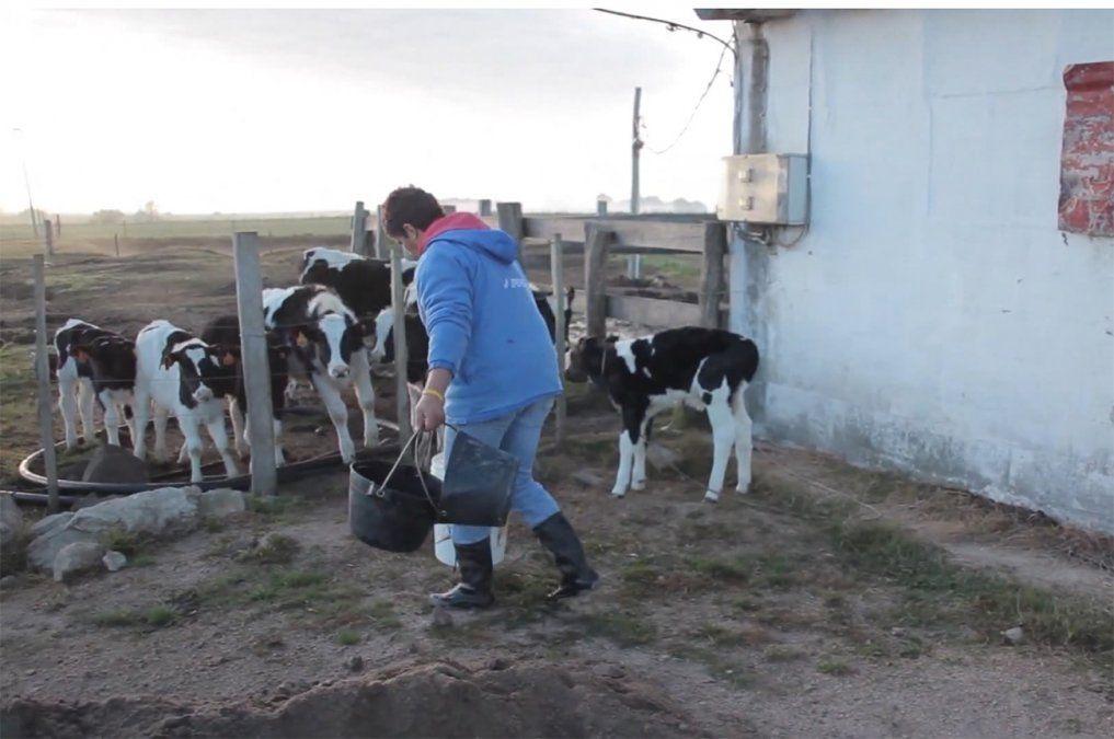 Hoy es el Día del Trabajador Rural, un sector que nuclea a unas 98.000 personas