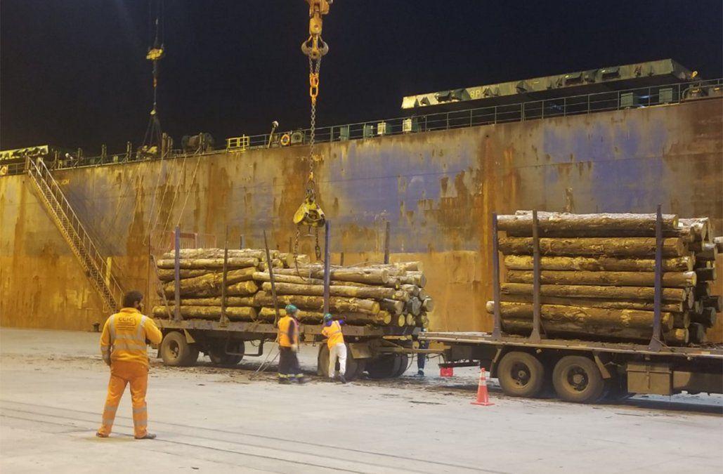 Puerto recibe buque que cargará 90.000 toneladas de madera