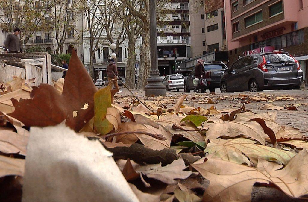 Tiempo algo nuboso con temperatura mínima de 2º en Montevideo
