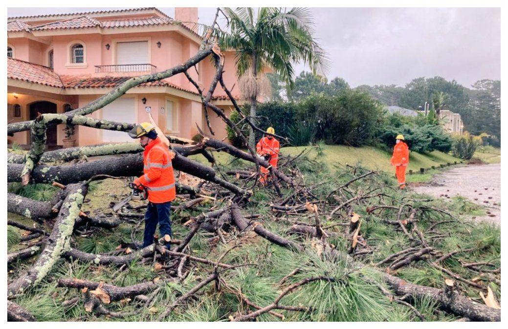 Punta del Ese sufrió lo peor de la tormenta del fin de semana