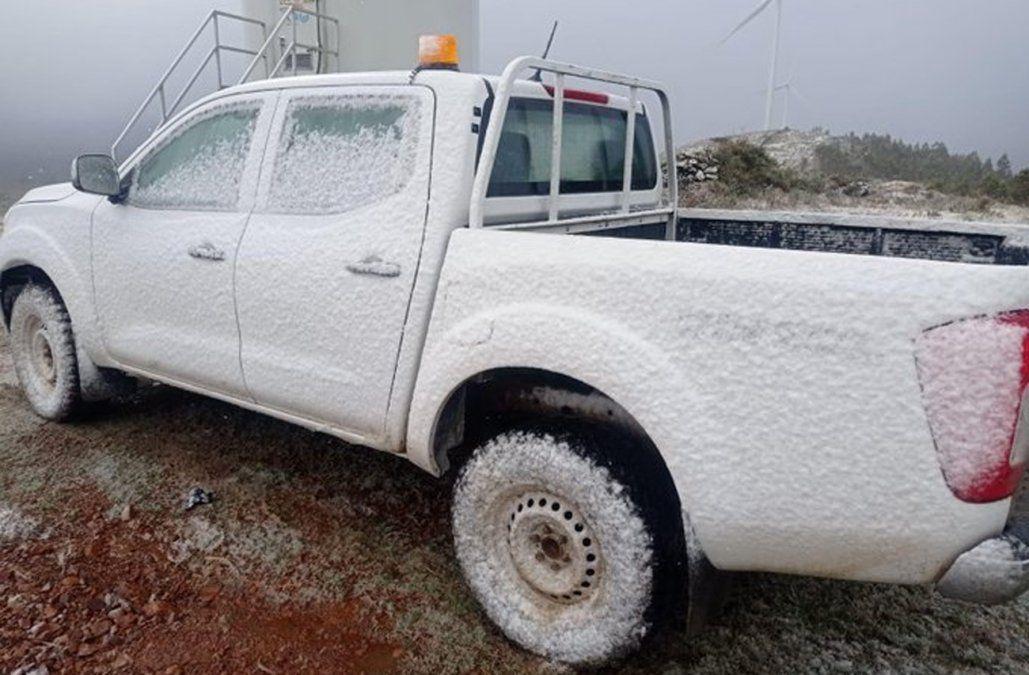 Árboles y autos cubiertos por nieve, los nuevos videos que publica Meteorología