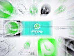 altText(ZooPark, un programa malicioso que puede leer conversaciones de Whatsapp)}