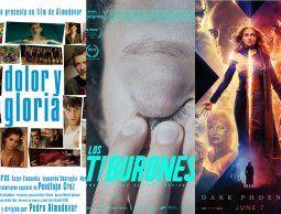 Lo que hay para ver en el cine; los recomendados de Jackie Rodríguez Stratta