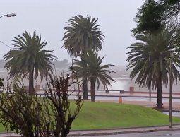 altText(Alertan por llegada de ciclón extratropical con viento fuerte y sensaciones térmicas bajo cero)}