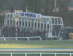 altText(Las Piedras, el Jockey Club de Melo y Maroñas serán los escenarios con actividad hípica.)}