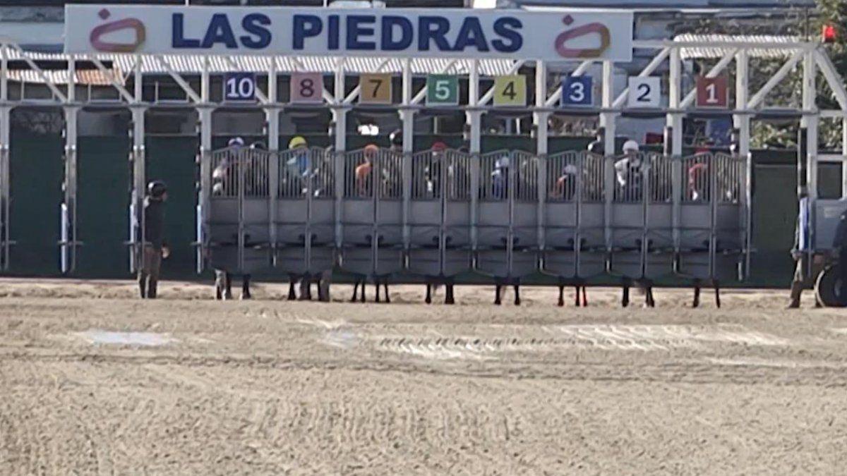 Jornadas Uruguayas en Equinos