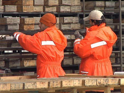 Aratirí envía 183 trabajadores al seguro y se queda sólo con 50