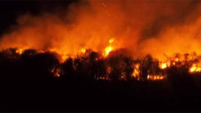 Tras 12 horas Bomberos controló incendio en Cerro del Toro