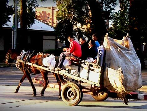Alcalde de Pocitos exige a la IMM que saque a los carritos