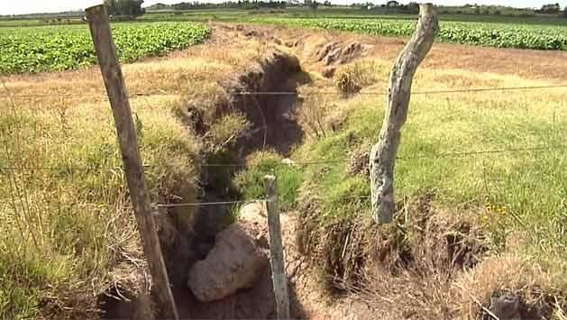 Si no llueve, en diez días decretarán emergencia agropecuaria en el país