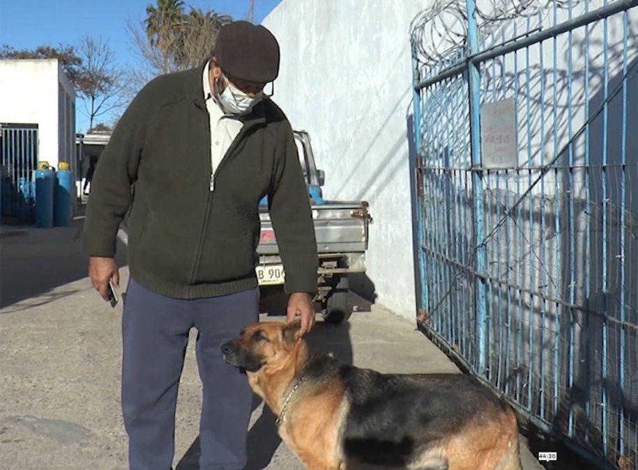 Un perro evitó una rapiña en un local de venta de garrafas