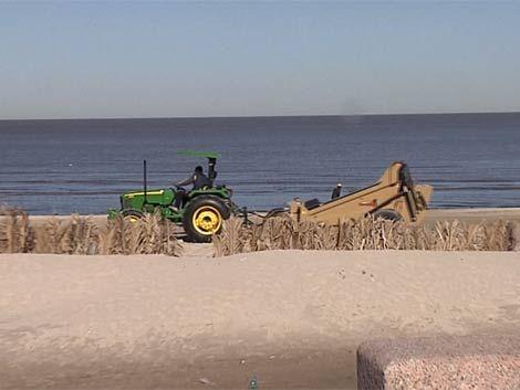 Las aguas de Montevideo están más limpias según informe de la IMM