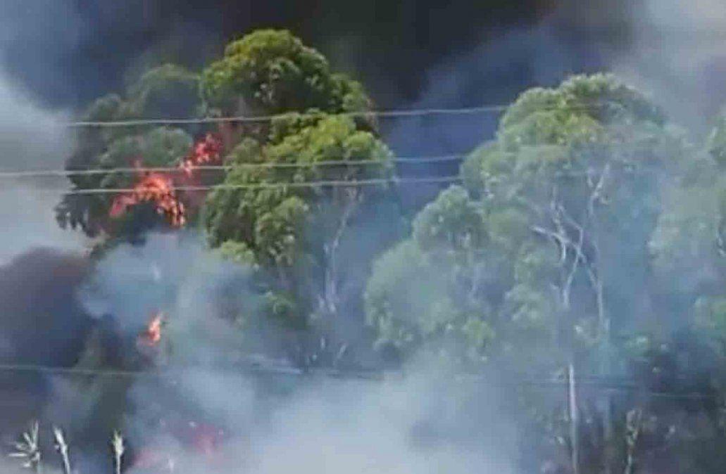 Incendio violento con propagación en el predio de la Colonia Etchepare