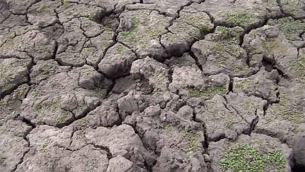 Financiamiento y préstamos blandos para productores afectados por sequía