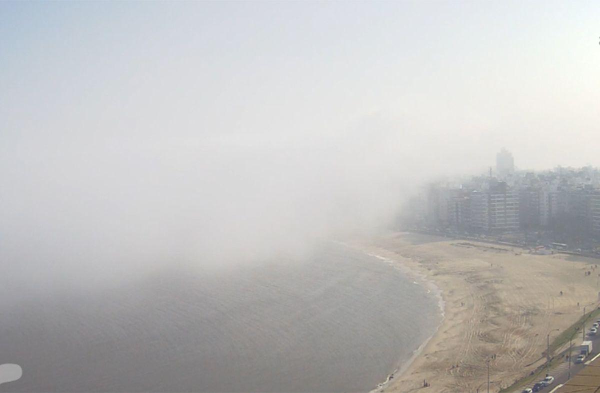 Montevideo bajo niebla: ¿Cuándo va a mejorar el tiempo?