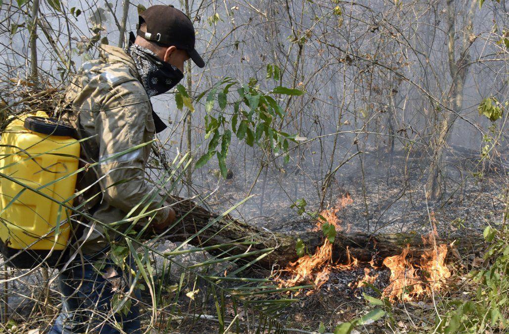 Lluvias ayudan a aplacar incendios forestales en Bolivia