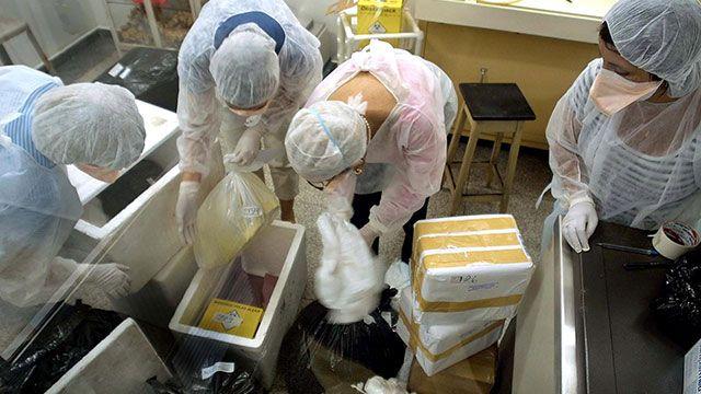Envían por error muestra de ántrax vivo a un laboratorio