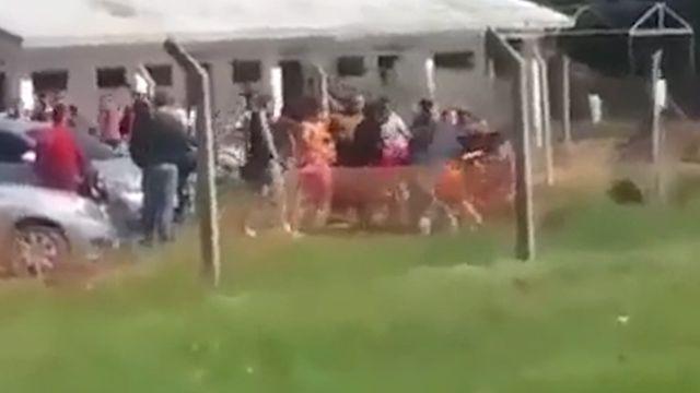 Club Basáñez expulsó a jugador involucrado en agresión a árbitros
