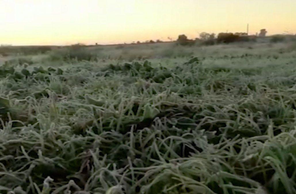 Meteorología advierte un comienzo de semana muy frío con mínimas de 0º