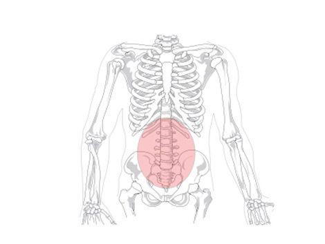 Dolores de espalda: la principal causa de incapacidad en el mundo