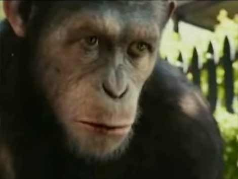 El planeta de los simios vuelve a los cines