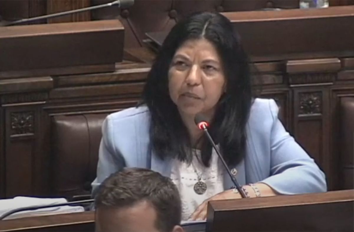 Salinas le respondió a diputada de Cabildo Abierto que no se vacunó por su fe cristiana