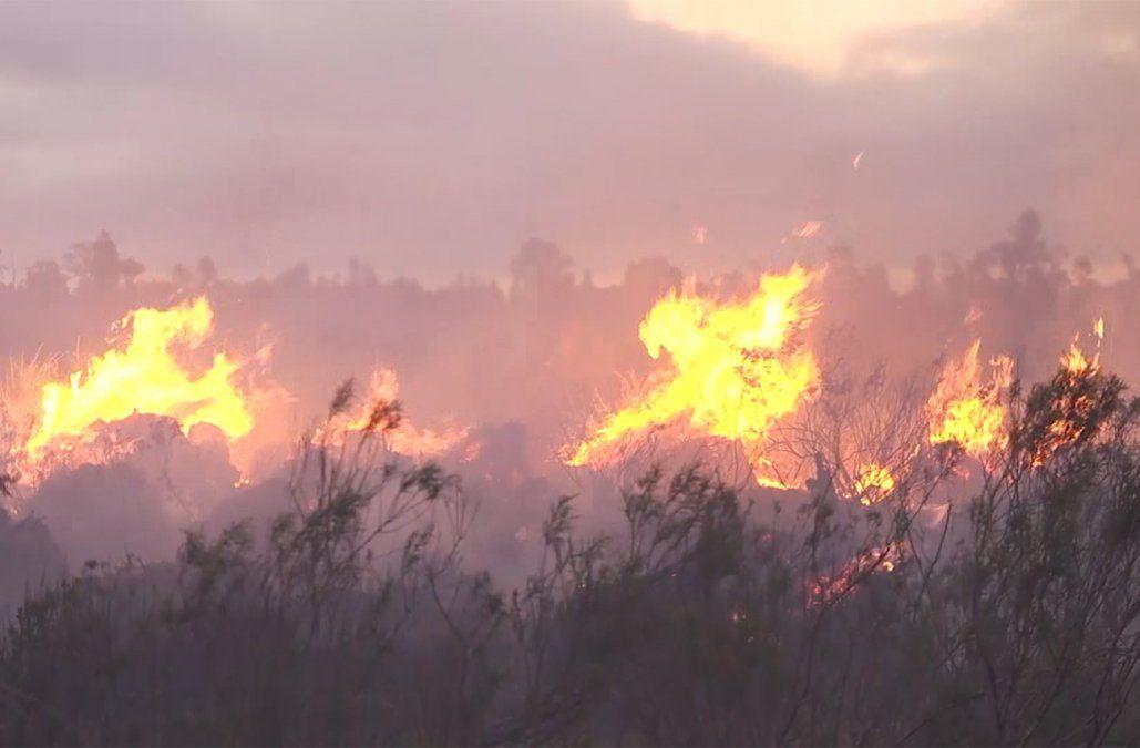 Multas de hasta $258.000 por quemas y fuegos que provoquen incendios forestales