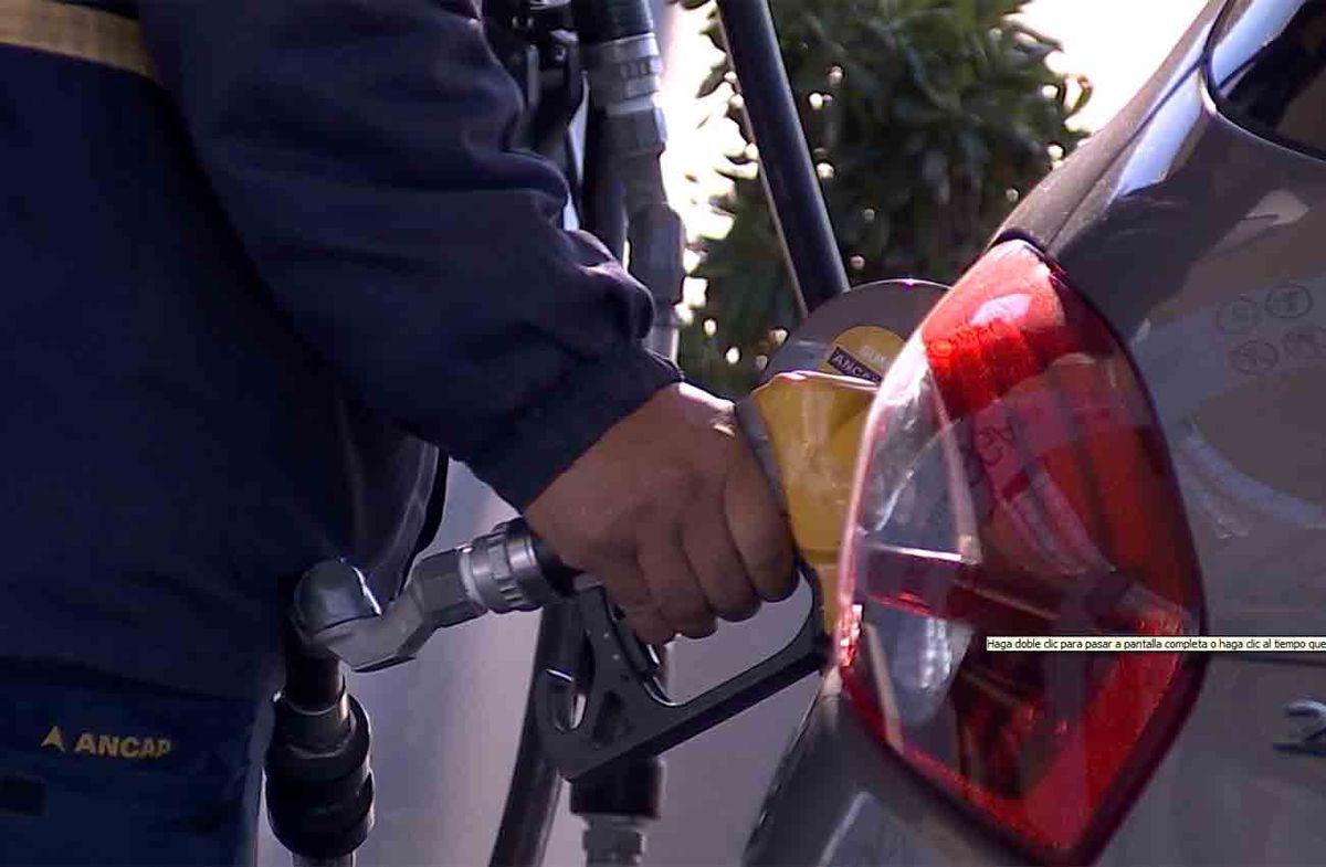 Gobierno decidió mantener los precios de los combustibles
