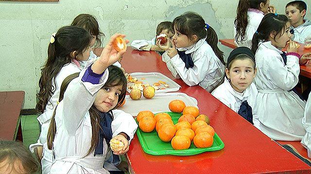 Empezó inspección de alimentación saludable en educación pública y privada