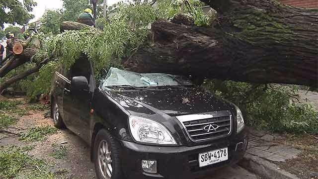 BSE recibió 135 denuncias por vehículos afectados por el temporal