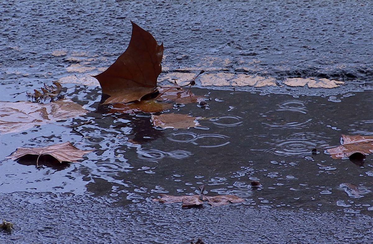 Primavera rara: anuncian el ingreso de un frente frío con lluvia y viento