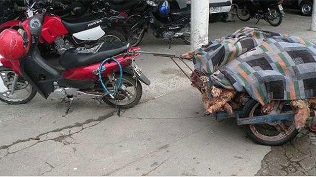 Robó ocho corderos y se los llevaba en moto cuando lo encontró la Policía