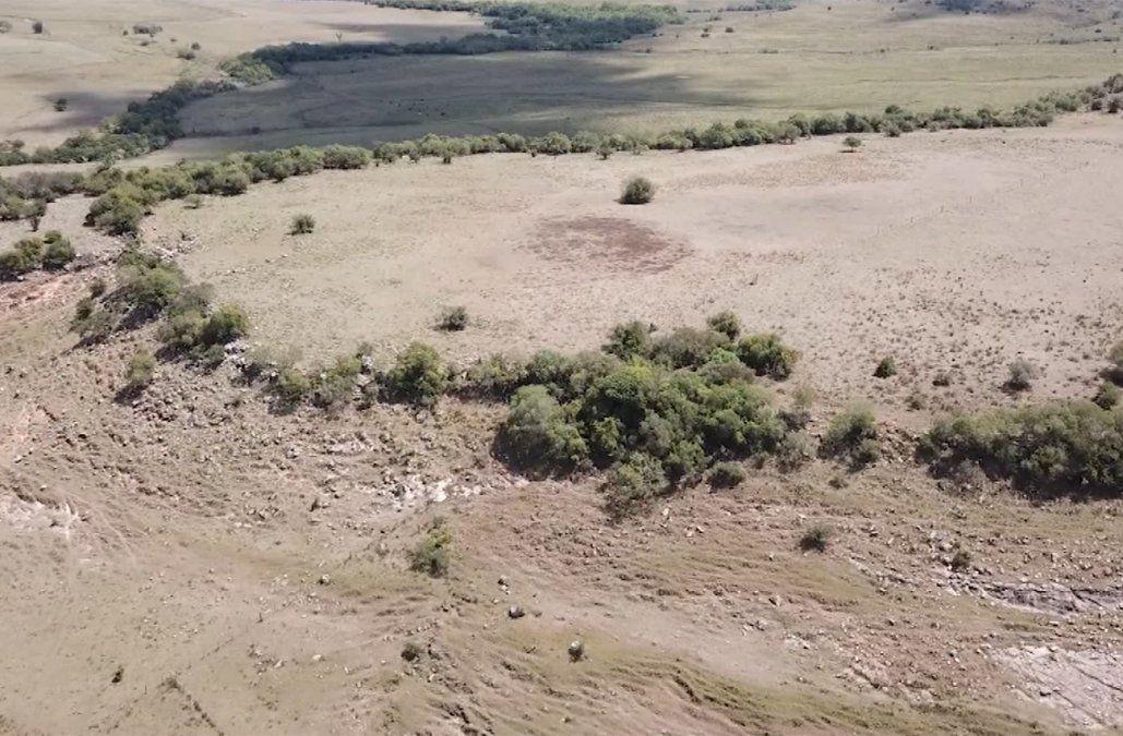 Gremiales proyectan pérdidas por US$ 1.000 millones por la sequía