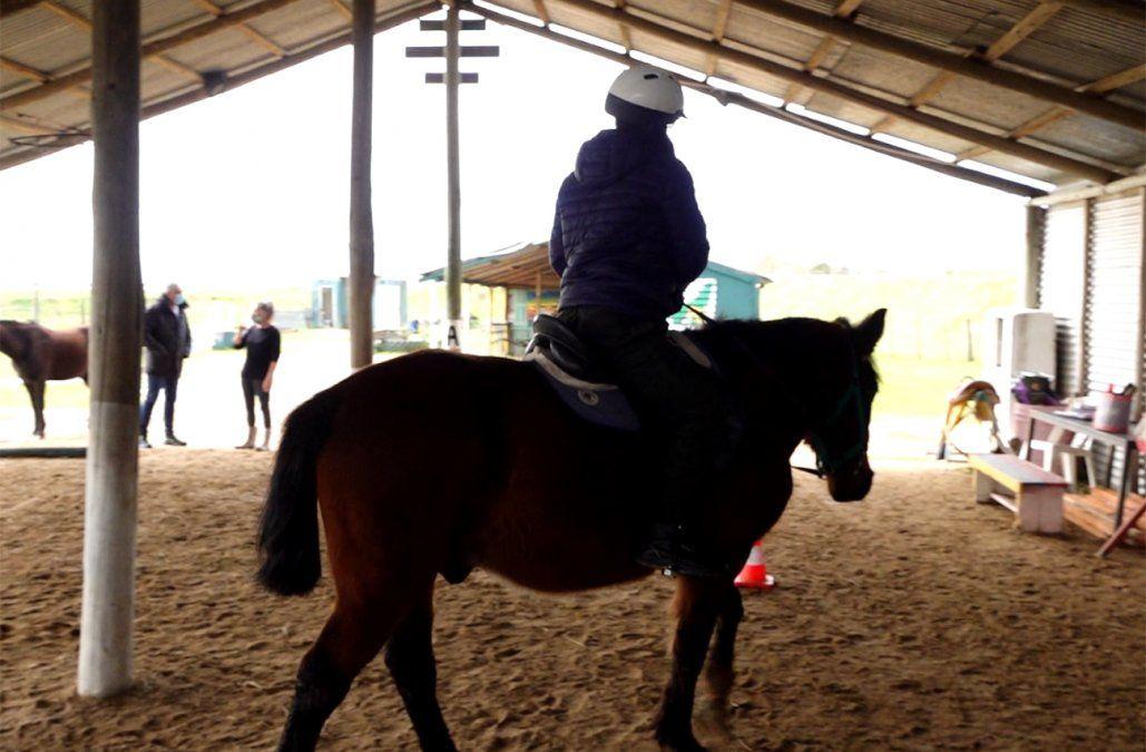 Atacaron caballos en Centro de equinoterapia de Maldonado