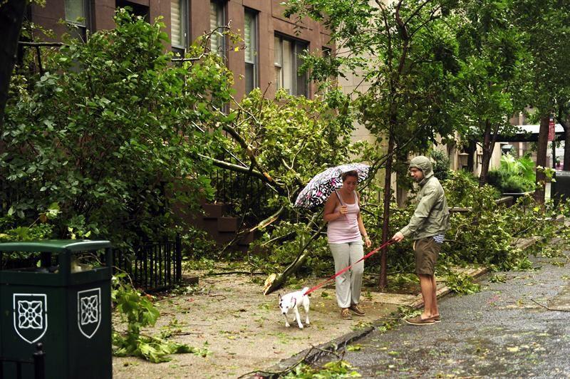 Cónsul uruguayo en N.Y respira aliviado tras tormenta tropical