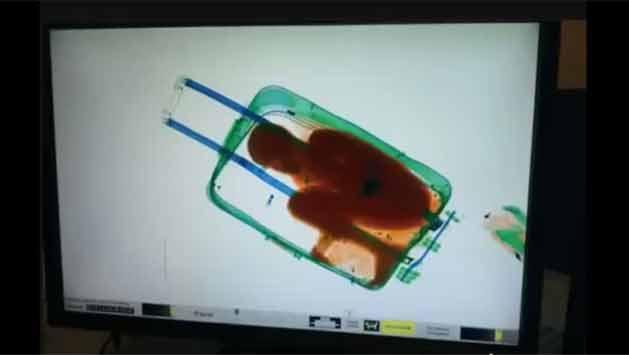 Intentaron ingresar a España a un niño dentro de una maleta